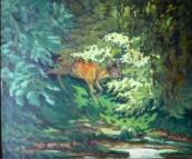 O. Funda? - Deer in the undergrowth