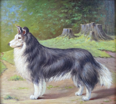 Alois Prochazka - Dog