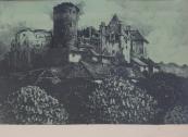 Ferdinand Engelmüller - Castle