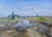 Antonin Balcar - Swamp