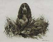 Alesa Vaic - Hunting dog with a roe