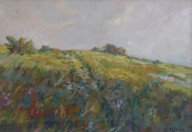 Pichlik - Meadow with bushes