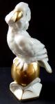 Parrot on a golden ball - Schlaggenwald