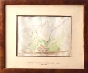 Charlotta Pipenhagen - Monte Cristallo