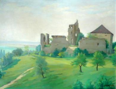 Hrad Dřevčice