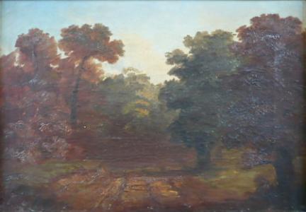 Podzimní cesta lesem
